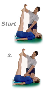 free motion exercise equipment instructions