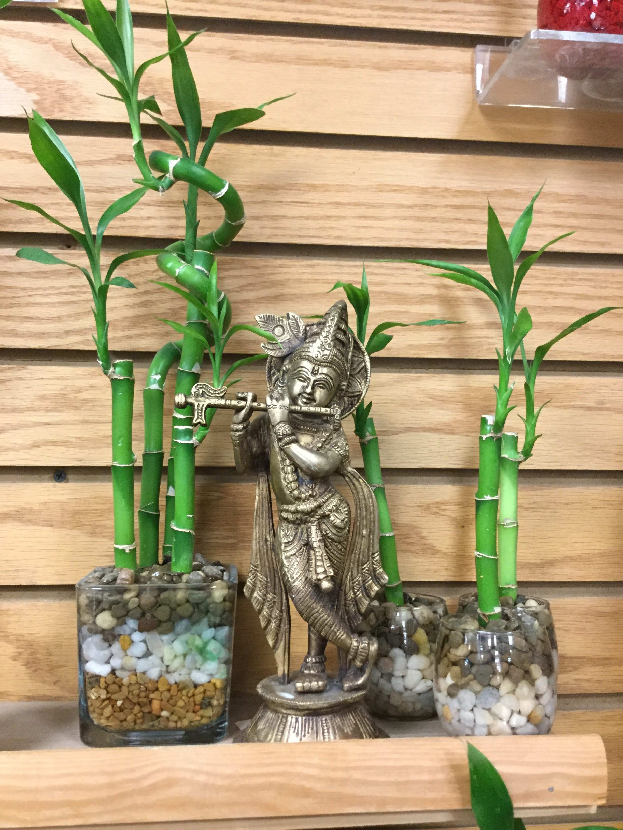 oil garden bamboo ultrasonic vaporiser instructions