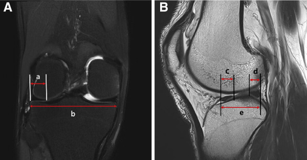 jacc imaging instructions for authors